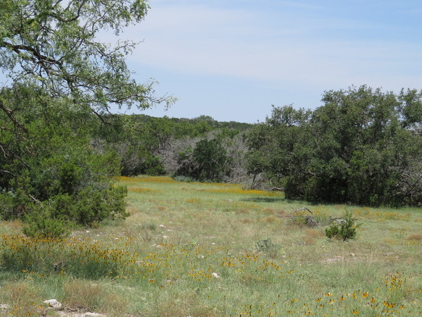 Texas Owner Financed Land specializes in ranch land and